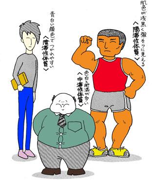 3つ体質に分かれる